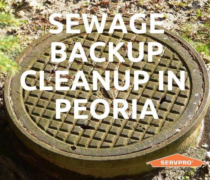 Biohazard Sewage Backup Cleanup In Peoria