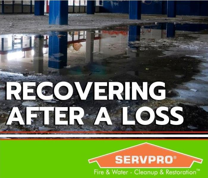 Servpro Of Peoria Company Profile About Us At Servpro Of