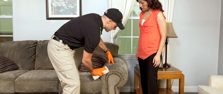 Peoria, IL carpet upholstery cleaning